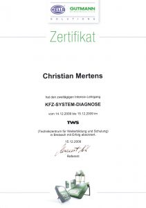 KFZ-System-Diagnose